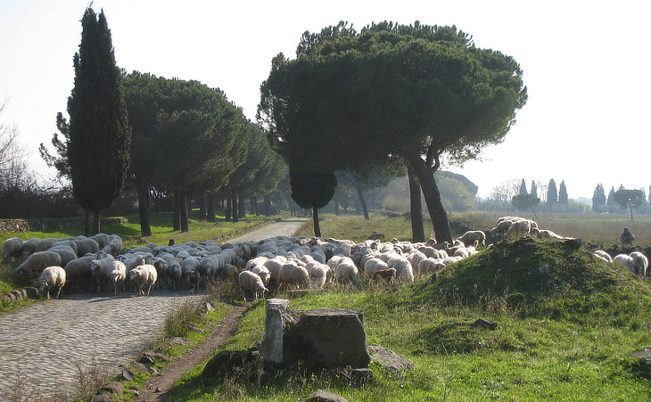 A section of Via Appia